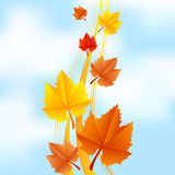 Fall leaves on sky background. Vector illustration of fall leaves on sky background stock illustration