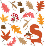 Fall leaves with squirrel. Vector illustration of a cute squirrel amid falling leaves with acorn and mushrooms Royalty Free Stock Photos