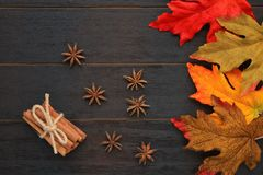 Fall leaves with star anise and cinnamon sticks stock photos