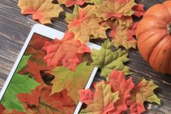 Fall leaves with tablet. Colorful fall leaves with pumpkin and tablet with leaf wallpaper stock photo