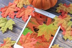 Fall leaves with tablet. Colorful fall leaves with pumpkin and tablet with leaf wallpaper royalty free stock photos