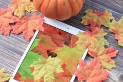 Fall leaves with tablet. Colorful fall leaves with pumpkin and tablet with leaf wallpaper stock photos