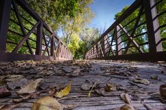 Fall leaves and trees, low angle on a pedestrian bridge. Maple Grove Minnesota. Low angle view. Fall leaves and trees, low angle on a pedestrian bridge royalty free stock photography