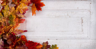 Fall leaves on a vintage paneled door Stock Photo