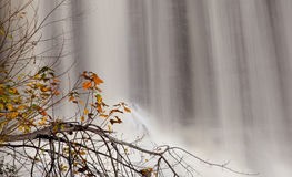 Fall leaves by waterfall Stock Photos
