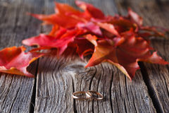 Fall on leaves on weathered table with wedding rings Stock Image