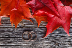 Fall on leaves on weathered table with wedding rings Stock Photography