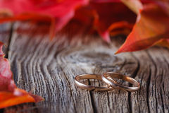 Fall on leaves on weathered table with wedding rings Stock Images