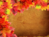 Fall leaves on wood background