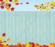 Fall leaves by wood fence Stock Photography