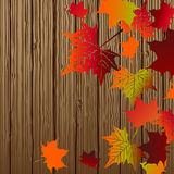Fall leaves with wood planks Stock Photos