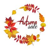 Fall leaves wreath for autumn sale design. Autumn lettering. Vector illustration Royalty Free Stock Images