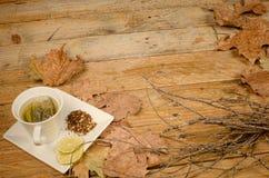 Fall lemon tea Royalty Free Stock Photo