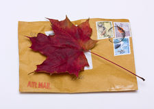 Fall letter. Autumn letter - an envelope and maple leaf Stock Photo