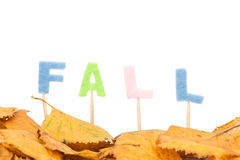 Fall letters Royalty Free Stock Images