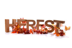 Fall Stock Photography