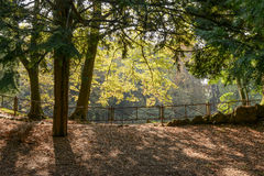 Fall light in Villa Reale park, Monza, Italy Stock Photos