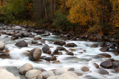 Fall on the Little Susitna River Stock Photography