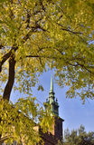 Fall in London. The spire of the historic ancient church known as All Hallows-by-the-Tower, London framed by trees in late autumn Stock Photos