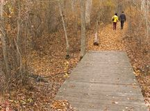 Fall In Love. This is a shot of a couple taking a Fall hike on a nature trail Stock Photo