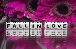 Fall in love message with pink big flowers. And text royalty free stock photography