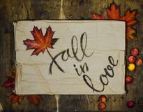 Fall in love postcard. Phrase for Valentine`s day. Autumn background with yellow-red maple leaf and paradise apples. Love letter stock photos
