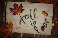 Fall in love postcard. Phrase for Valentine`s day. Autumn background with yellow-red maple leaf and paradise apples. Love letter royalty free stock photography