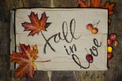 Fall in love postcard. Phrase for Valentine`s day. Autumn background with yellow-red maple leaf and paradise apples. Love letter stock photography