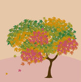 Fall maple. Colour illustration of fall maple Royalty Free Stock Photo