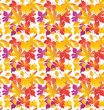 Fall maple leaf pattern. Fall maple leaves seamless pattern. Autumn leafs on white. Maple leaves Autumn background. Fall wallpaper. Holiday background. Digital Stock Photography