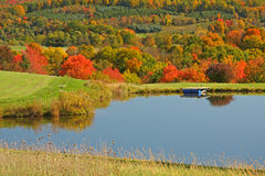 Fall maple trees and pond Royalty Free Stock Photo