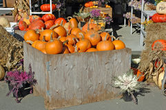 Fall market. Autumn market display in horizontal format Royalty Free Stock Images