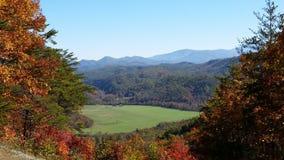 Fall in maryville Tennessee Lizenzfreies Stockbild