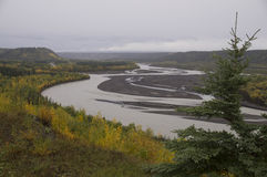 Fall Matanuska River Alaska Stock Images