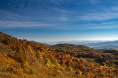Fall on Max Patch Mountain Stock Photo