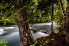Before the Fall. McKenzie River just before Koosah Falls on Hwy 126 in Oregon stock photos