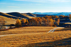 The fall meadows sunrise Royalty Free Stock Image