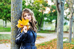 Fall melancholy Stock Images