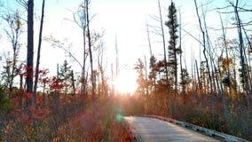 Fall in Michigan. Pure Michigan Habitat Park Royalty Free Stock Photography