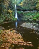 Fall, Middle North Falls, Silver Falls State Park