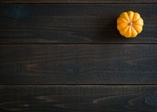 Fall Mini Pumpkin in Minimalist Still Life Card on Moody, Dark Shiplap Wood Boards with Extra Room or space for copy, text or your Stock Photos