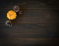 Fall Mini Pumpkin and Pine Cones in Minimalist Still Life Card on Moody, Dark Shiplap Wood Boards with Extra Room or space for cop. Y or text. Horizontal photo stock photos