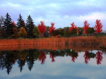 Fall in Minnesota. Minneapolis area hwy 169 & 394 Royalty Free Stock Photos
