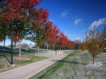 Fall in Minnesota with sidewalk horizontal view Stock Image