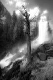 fall mist trail vernal Στοκ φωτογραφία με δικαίωμα ελεύθερης χρήσης
