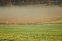Country field fog landscape on autumn day Stock Image
