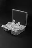 Fall mit vielem Geld Lizenzfreie Stockfotos