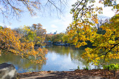 Fall morning in central park Royalty Free Stock Photography