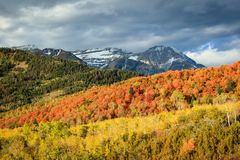 Fall sprectrum dawn in the Southern Wasatch Mountains. Fall morning dawn in the Southern Wasatch Mountains, Utah, USA Royalty Free Stock Image