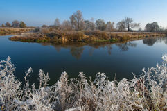 Fall morning with frost Stock Photography